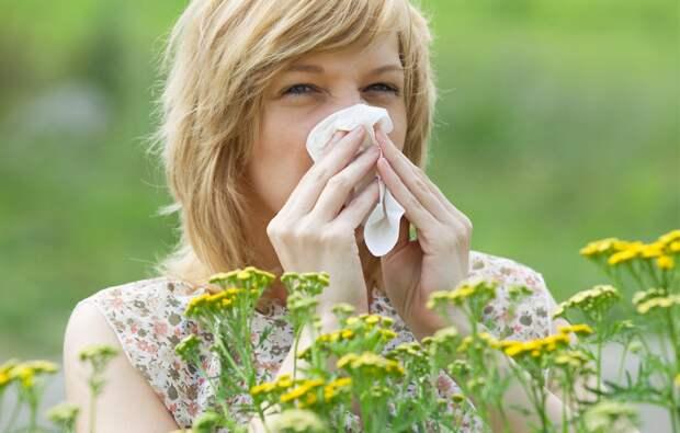 Картинки по запросу cuidar el sentido del olfato