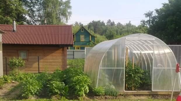 Дачникам рассказали о пестицидах из Европы, которыми травят россиян