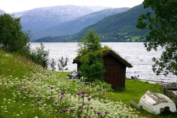 fjords20 Самые красивые фьорды Норвегии