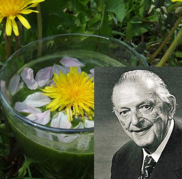 Лечение соками: Метод самого знаменитого аптекаря ХХ столетия Вальтера Шененбергера