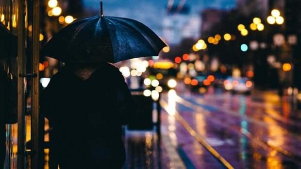 Дожди и грозы ожидаются в Ленобласти 14 июня