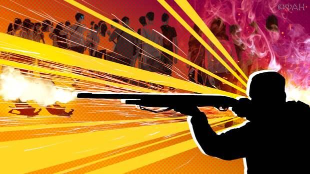Ковитиди пояснила, почему после казанской трагедии нужен новый закон об оружии