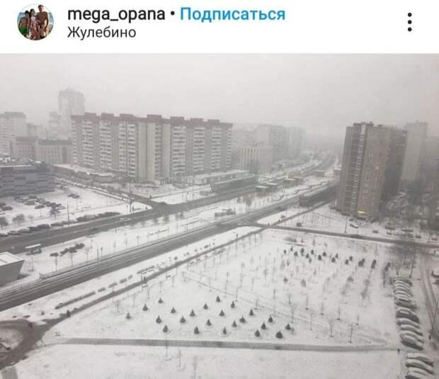 Фото дня: зима опять подкралась незаметно