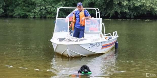 На Химкинском водохранилище спасли ослабевшего пловца