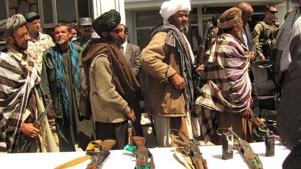 Представитель «Талибана» объяснил, кто распространил слухи о «сговоре» с РФ