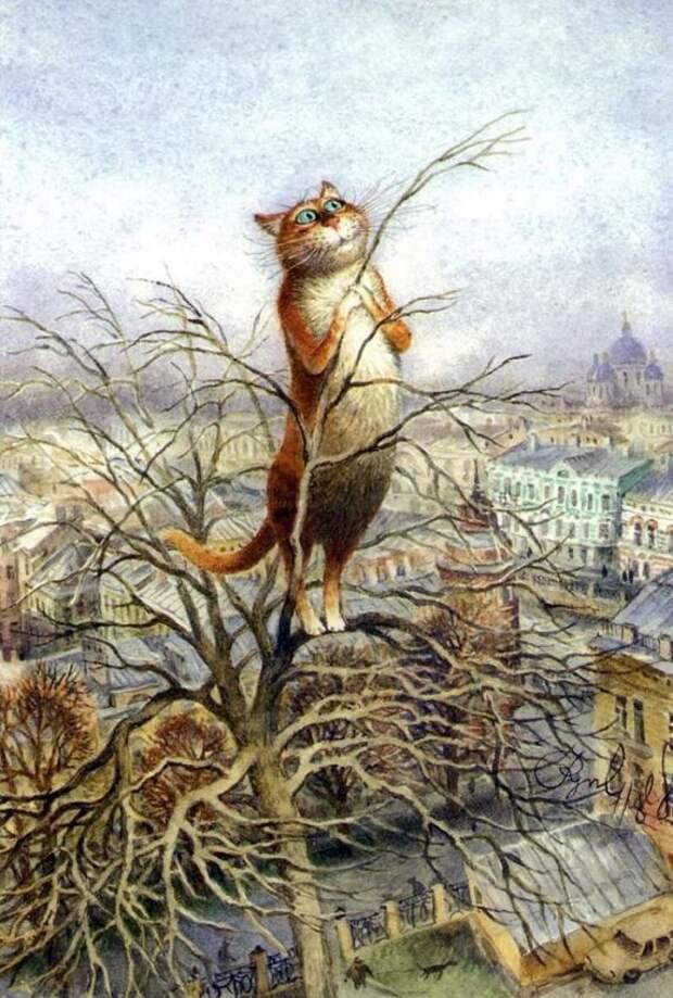 Сказочные питерские коты