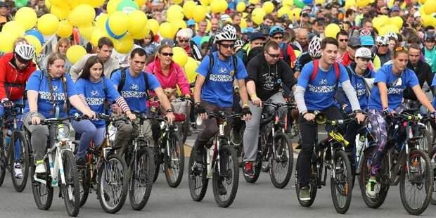 Москва готова возобновить велофестивали