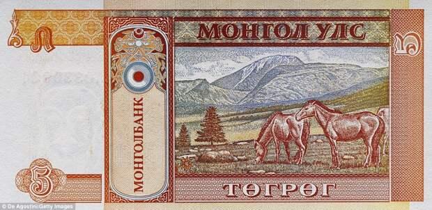 5 монгольских тугриков