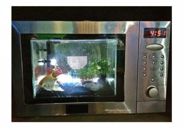 Рыба в микроволновке