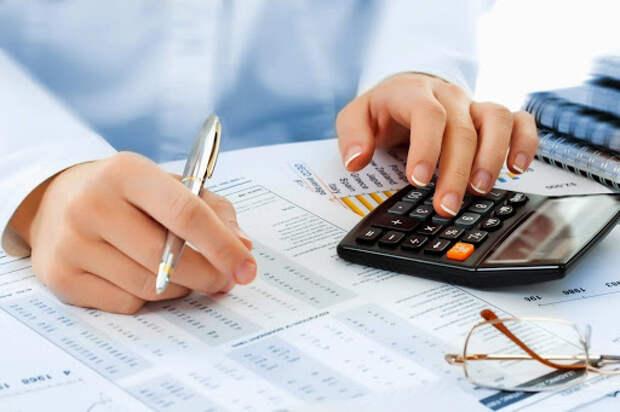 Профессиональный налоговый вычет: кто и как может оформить