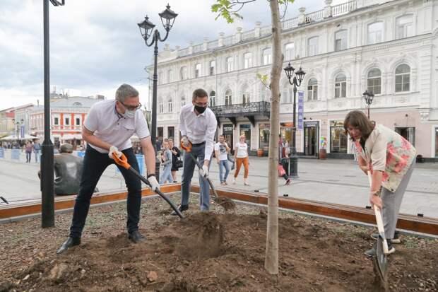 Ландшафтная композиция с яркими растениями появится в сквере имени Евгения Евстигнеева в Нижнем Новгороде
