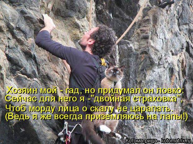 kotomatritsa_l (3) (604x453, 326Kb)