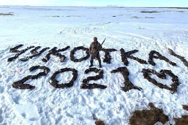 Охотник на Чукотке выложил «сердце» из трупов сотен убитых им гусей