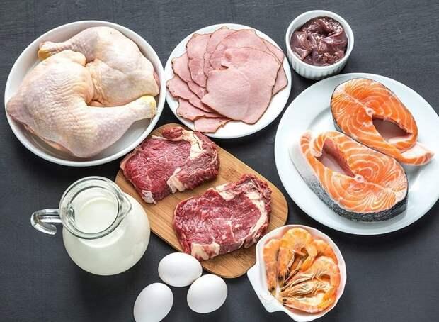 """Картинки по запросу """"10 причин уменьшить потребление животного белка"""""""""""