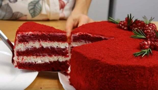 Торт Красный Бархат: классический рецепт оригинального тортика Рецепт, Торт, Сладости, Вкусняшки, Выпечка, Видео, Длиннопост