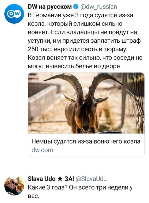 """""""Обидеться можно только на русскую женщину?"""": Вучичу задали три неудобных вопроса"""