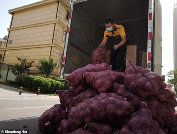 Китаянка отправила бывшему в подарок тонну лука, чтобы тот поплакал