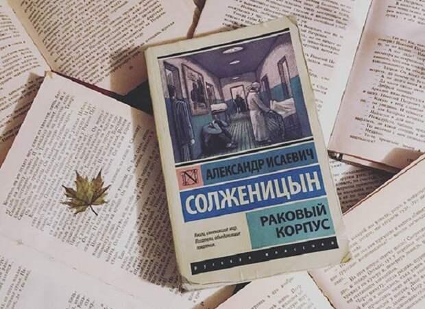 Трутовик скошенный стал известен благодаря книге А.Солженицина «Раковый корпус» / Фото: livelib.ru