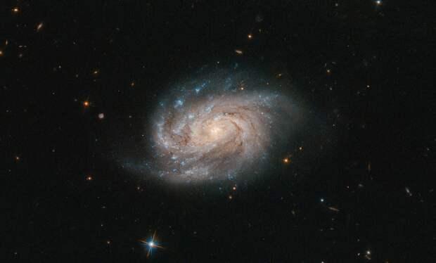 Ученые зафиксировали загадочный сигнал из космоса