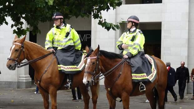 Девять полицейских пострадали на акциях в поддержку Палестины в Лондоне