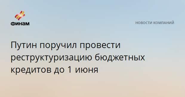 Путин поручил провести реструктуризацию бюджетных кредитов до 1 июня