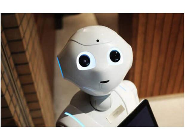 Новосибирский робот Николай примет участие в «Тотальном диктанте»