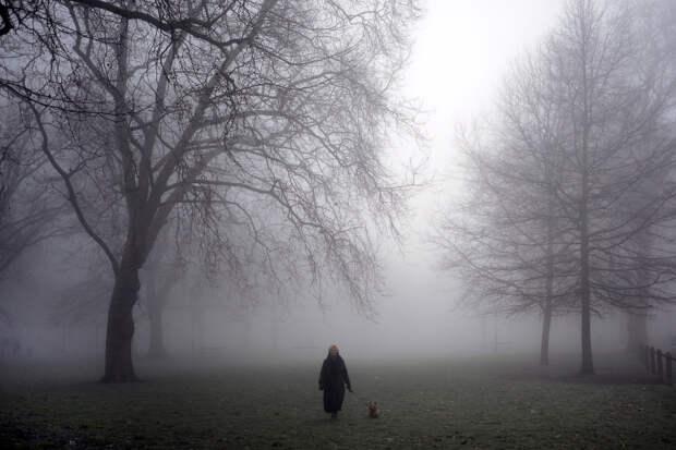 Там, за туманами
