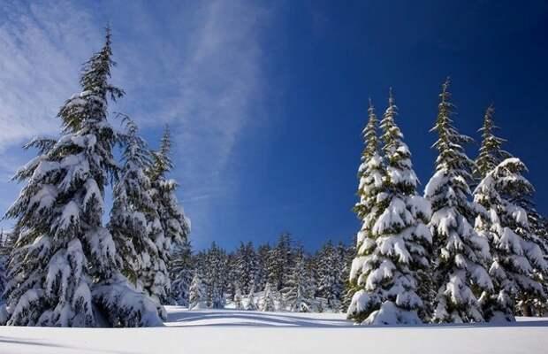 Синоптики предупредили об аномальных морозах  в начале следующей недели