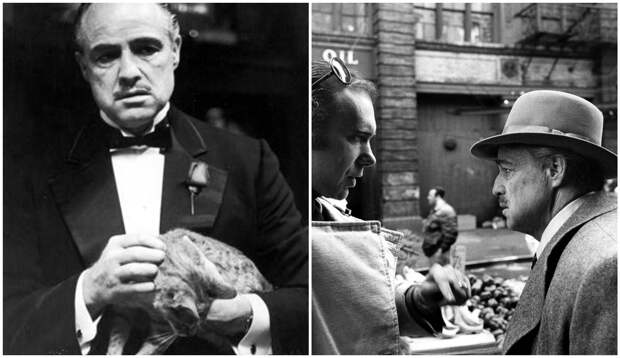Редкие кадры со съемок «Крестного отца» 1972года