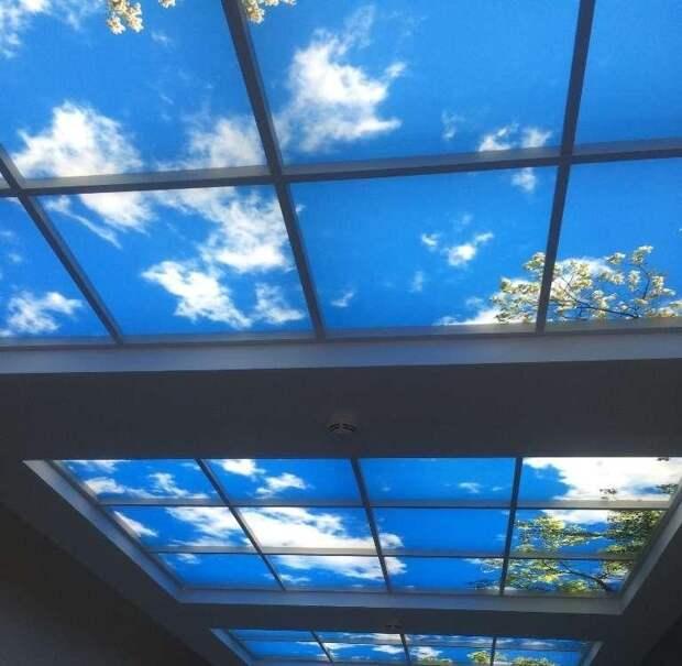 4. Окно на потолке дизайн интерьера, идеи, окна, пейзаж, пространство, ремонт