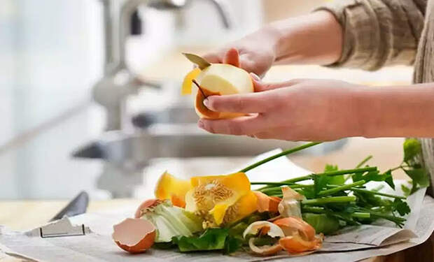 Готовим без отходов и экономим: еды становится больше, а мусора меньше