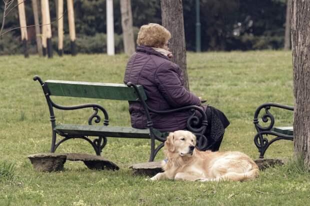Мать-пенсионерка попросила финансовой помощи, и сын помог – нашёл ей подработку.