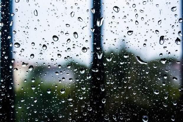 Дожди и до 11 градусов тепла прогнозируют на Кубани