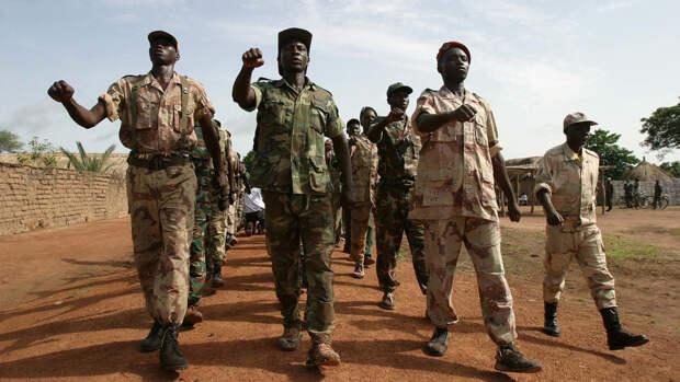 Камерунские журналисты встали на защиту российских инструкторов в ЦАР
