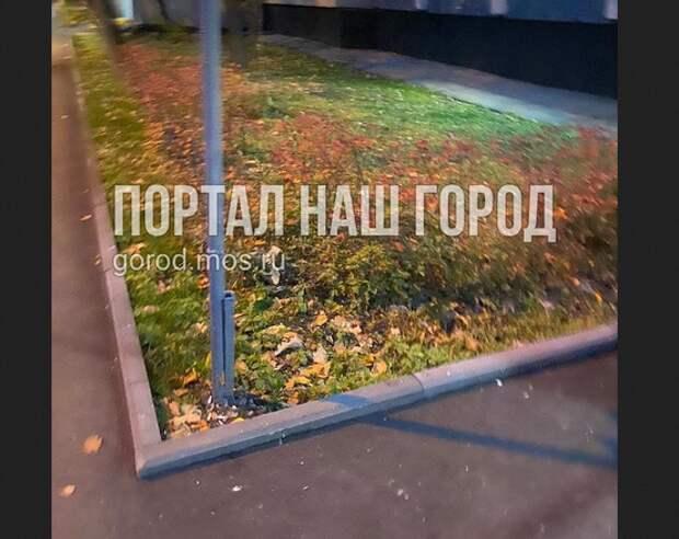 На Строгинском бульваре переложили асфальт, но забыли поставить урны