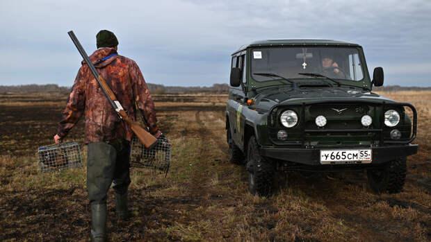 В России резко сократились популяции северного оленя и волка