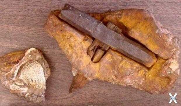 Сложно поверить, что этому молотку 140 миллионов лет!