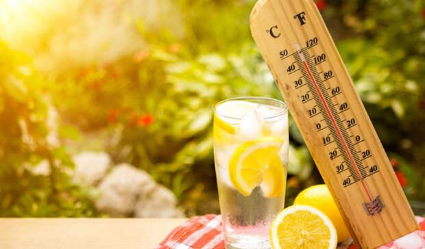 Рабочие дни в Башкирии начнутся с летней жары