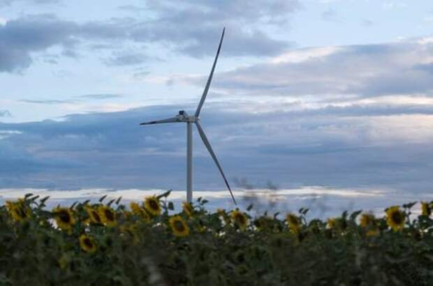 A wind turbine is seen through sunflowers during sunset outside Ulyanovsk, Russia July 20, 2020. Picture taken July 20, 2020. REUTERS/Maxim Shemetov