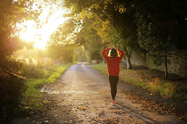Почему нужно регулярно выходить на прогулку