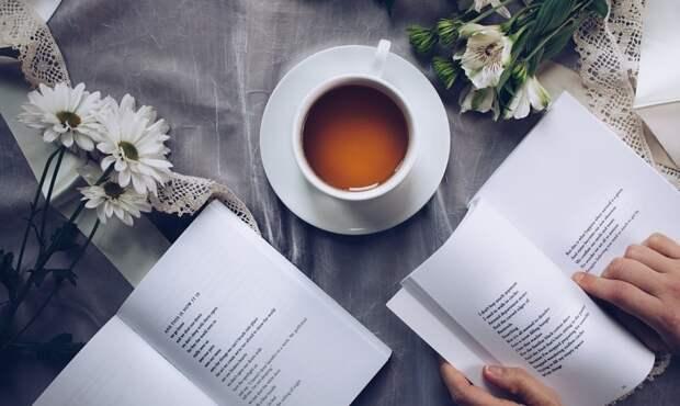 Агроном Тихонова оценила вероятность дефицита индийского чая в РФ