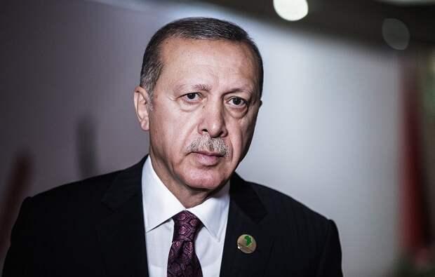 Эрдоган закатил истерику и, поджав хвост, поехал «на ковёр» в Москву