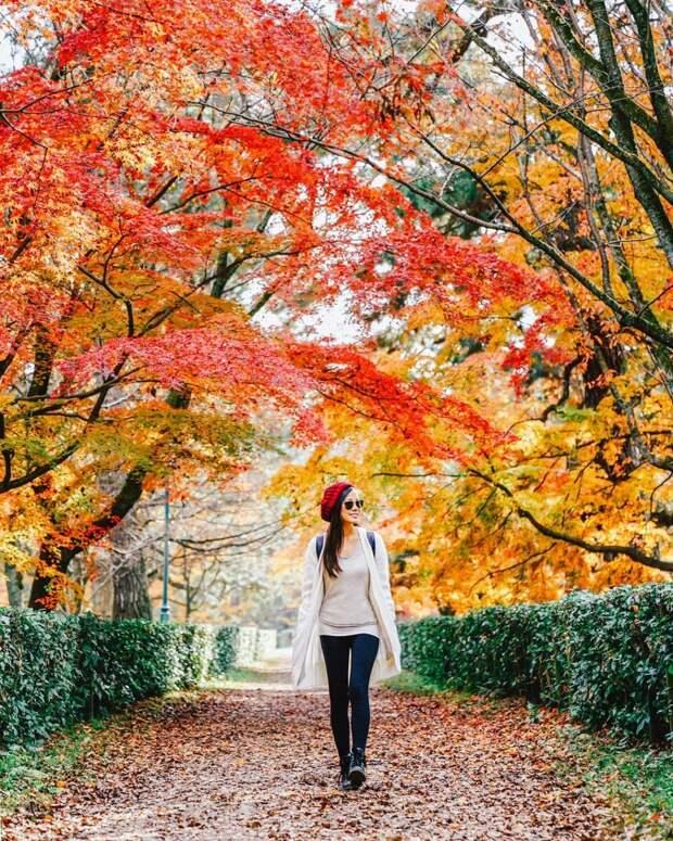 Пейзажи и путешествия на снимках Мишель Чу