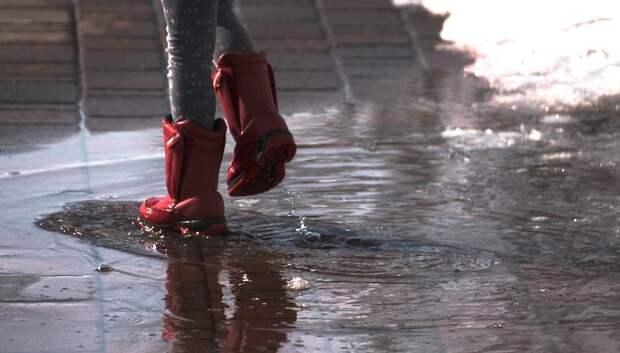 До 10 градусов тепла и дожди ожидаются в Подольске в пятницу