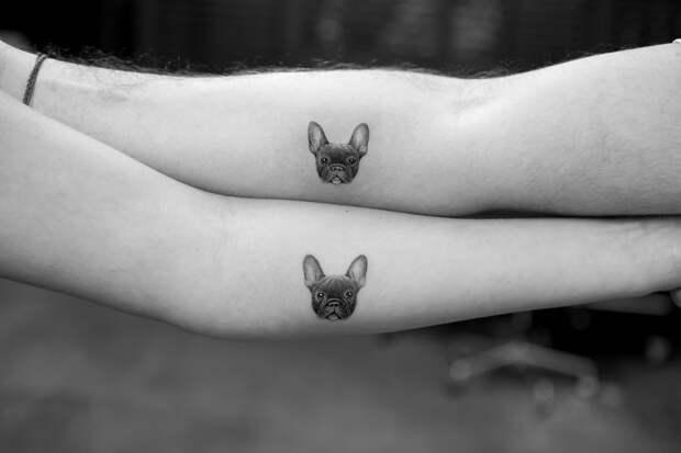 20 милых идей для татуировок с домашними животными