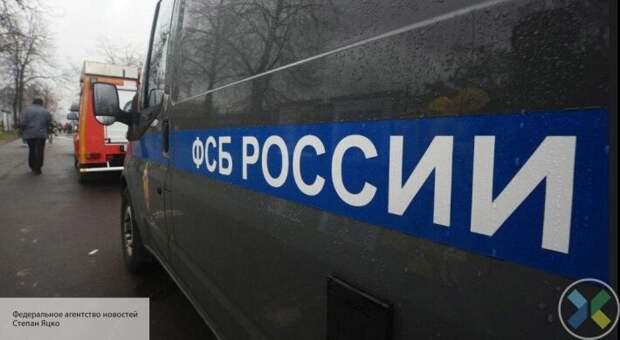ФСБ задержали украинских националистов в двух российских городах