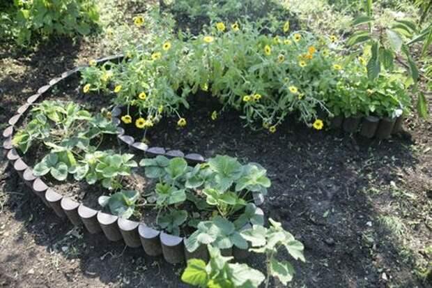Красивый огород – мечта дачника