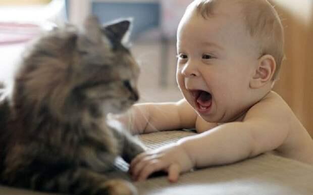 Если вы думаете, что животные плохо уживаются с детьми, то взгляните на эти фото