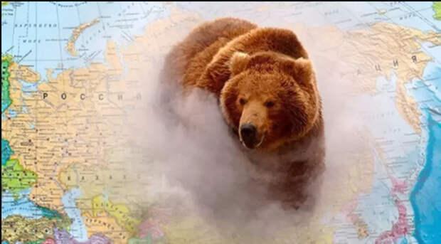 Медведь не воюет с мышами...