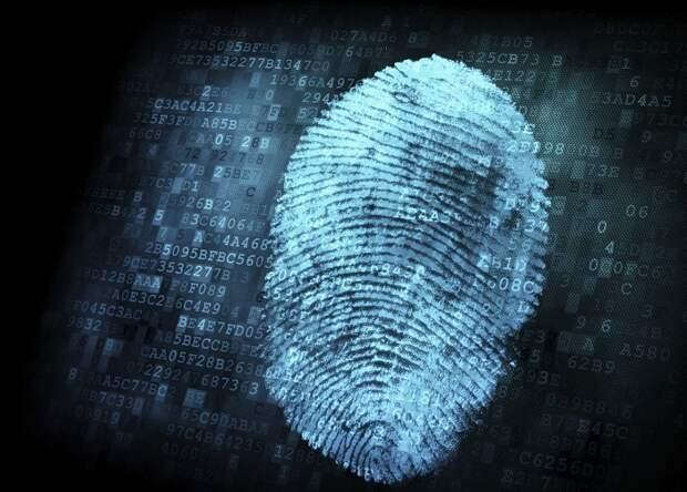 Вещи, которые можно узнать по вашему отпечатку пальца